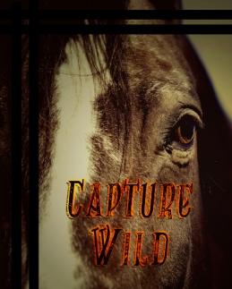 Capture Wild legal cover