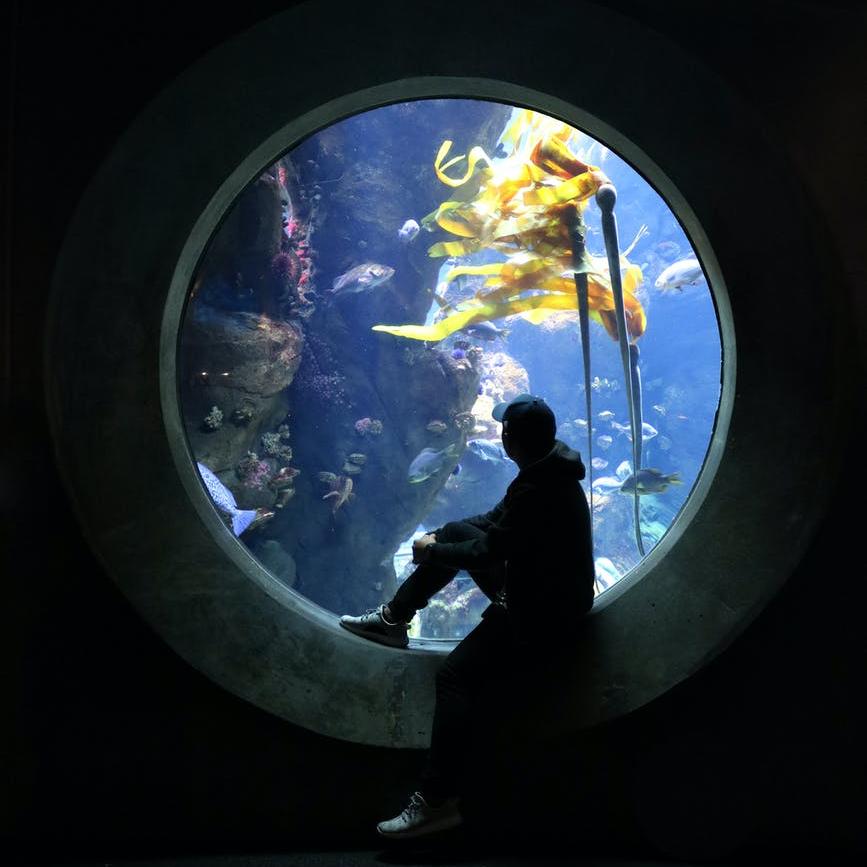 underwater window and a man sitting wearing hat